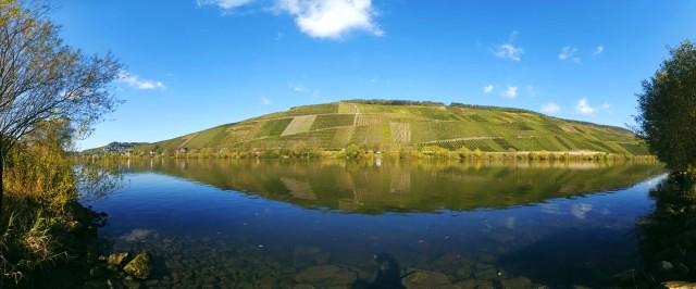 Dive Into the German Wine Portfolio with Peter Newton